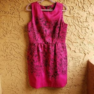 Taylor fuchsia pink and black floral dress